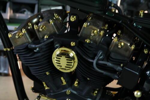 Dettaglio Motore Shovelhead D-24k